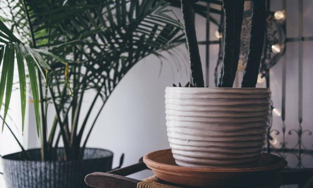 Cómo decorar espacios de manera sostenible